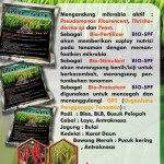BIO-SPF  (Nutrisi dan Proteksi Tanaman)