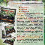 SUPERGLIO (Fungisida Organik Super)