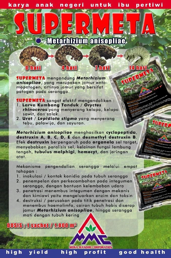 Pestisida biologi SUPERMETA mengandung Metarhizium anisopliae, yang merupakan jamur entomopatogen, artinya jamur yang bersifat patogen pada serangga.