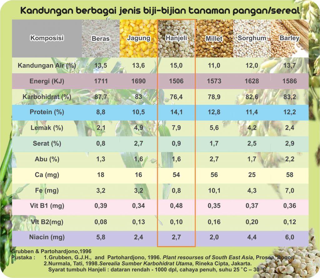 komposisi berbagai biji sereal-hanjeli tepung berprotein dan berkalsium tinggi