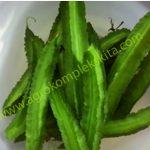 Bercocok tanam kecipir, tanaman sayur alternatif pengisi lahan