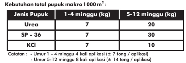 kebutuhan pupuk makro untuk tomat lahan 1000m
