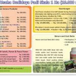 Analisa Usaha Budidaya Padi Skala 1 Hektar