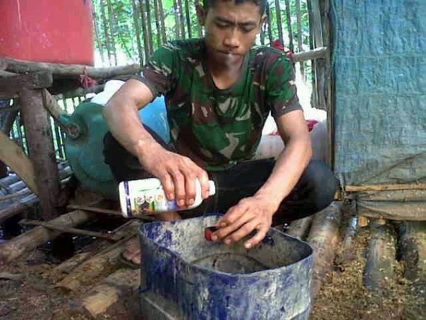 penggunaan vittoterna untuk ternak ayam - 1 tutup dicampur 1 liter minuman - harus habis hari itu juga
