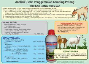 analisa usaha ternak kambing untuk 100 ekor selama 100 hari