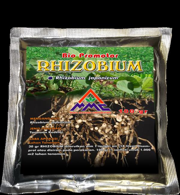 sachet rhizobium bio promotor 2