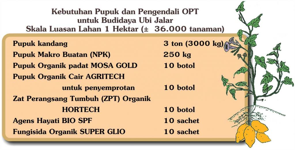 Pupuk organik padat/ fermentasi pupuk kandang, 3 ton (3000 kg) Pupuk Makro NPK 250 kg Pupuk Organik padat MOSA GOLD 10 botol Pupuk Organik Cair, untuk penyemprotan AGRITECH 10 botol Zat Perangsang Tumbuh (ZPT) Organik HORTECH 10 botol Agens Hayati BIO SPF 10 sachet Fungisida Organik SUPER GLIO 10 sachet