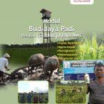 Modul Budidaya Padi dengan Teknologi Organik MMC