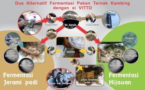 bagan 2 model fermentasi pakan untuk kambing