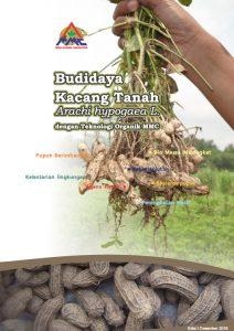 panduan budidaya kacang tanah pdf