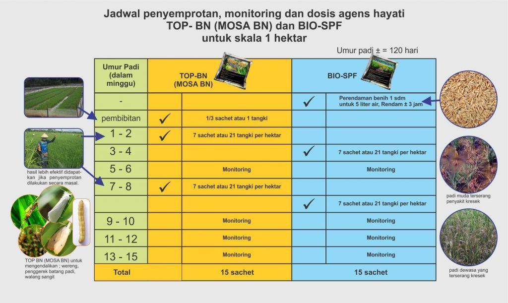 jadwal penyemprotan bio spf dan top bn