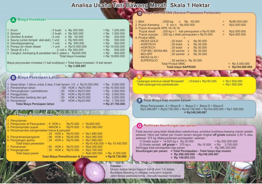 analisa usaha budidaya bawang merah skala 1 hektar.