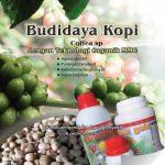Modul Budidaya Kopi dengan Teknologi Organik MMC