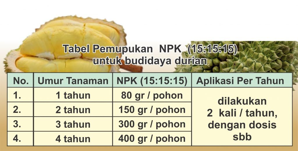tabel-pemupukan-npk-pada-budidaya-durian