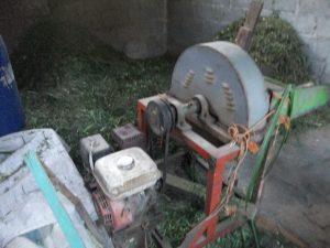 Pencacahan Rumput Pencacahan rumput dengan mesin . Dengan mesin berbahan bakar bensin 2 liter mampu membuat cacahan rumput bagi 20 ekor sapi untuk persediaan 5 hari. Sedangkan seekor sapi diberi makan perhari 30 kg rumput. Sehingga 2 liter bensin cukup untuk membuat cacahan pakan rumput sebanyak 3 ton.