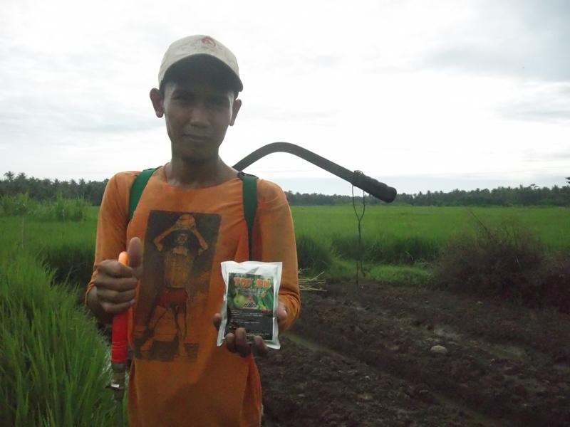 Salah satu petani yang ikut andil mengaplikasikan TOP BN untuk pengendalian hayati hama wereng