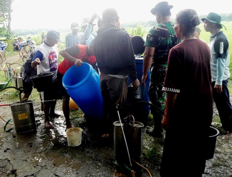 Antusiasme petani dan tentara dalam gerakan massal pengendalian hayati hama wereng dengan TOP BN