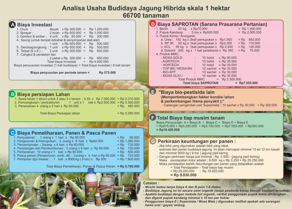 Analisa Usaha Budidaya Jagung Skala 1 Hektar Agrokompleks Kita