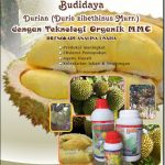 Modul Budidaya Durian (Berikut Analisa Usaha)