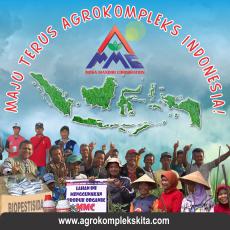 mosa mandiri corporate, mmc, solusi pertanian perkebunan peternakan perikanan,